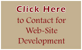Contact for Website Development